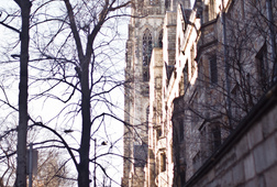 Explore Yale With Memorable Photos