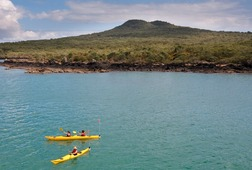 The Original Rangitoto Sea Kayak Tour