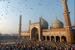 Old Delhi Half-Day Walking Tour