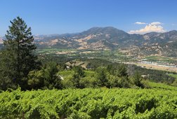 Calistoga Wine Tour