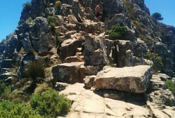Guided Run, Walk or Hike Up Lion's Head