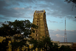 Private Tour to Mysore From Bangalore