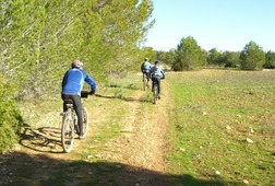 Explore Mallorca by Bike!