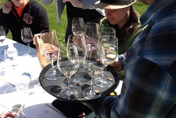 Oregon Wine Tasting Tour