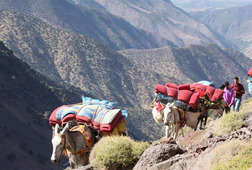 Toubkal Circuit via Lake Ifni - 6 Days