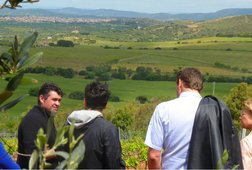 Food & Wine Tour to Sardinian Winery