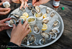 Oyster Lover's Tour
